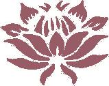 Marthie Beumer website protea